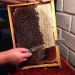 медово-перговая рамка