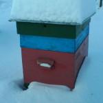 Многокорпусный улей. Многокорпусный улей замело снегом
